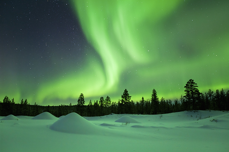 Northern Lights | Top 5 Christmas Holiday Ideas | Norad Travel